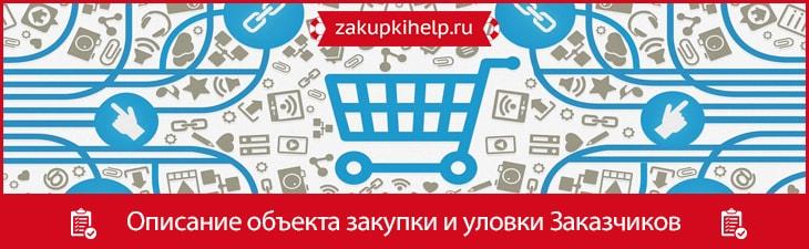 описание объекта закупки